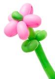 Fiore di pallone Immagine Stock