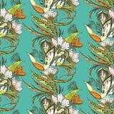 Fiore di Paradise e modello degli uccelli illustrazione di stock