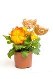 Fiore di Pasqua con gli uccelli del pan di zenzero Fotografia Stock