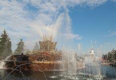 Fiore di pietra della fontana. VDNH. Mosca Fotografia Stock