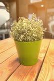 Fiore di plastica Fotografia Stock Libera da Diritti