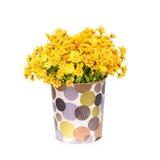 Fiore di plastica per la decorazione fotografie stock