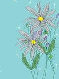 Fiore di purezza Fotografie Stock