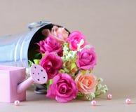 Fiore di Rosa Immagine Stock