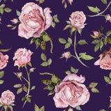 Fiore di Rosa su un ramoscello Reticolo floreale senza giunte Pittura dell'acquerello Illustrazione disegnata a mano royalty illustrazione gratis