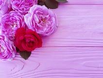 Fiore di Rosa sul saluto di legno rosa del fondo fotografia stock