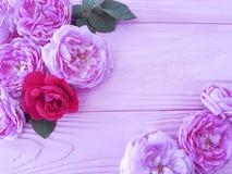 Fiore di Rosa sul saluto di legno rosa della tavola del fondo fotografia stock libera da diritti
