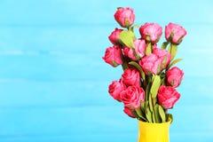 Fiore di Rosa sul vaso, su fondo blu Fotografia Stock