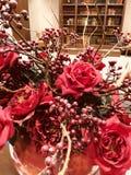 Fiore di rosso di Natale Fotografia Stock