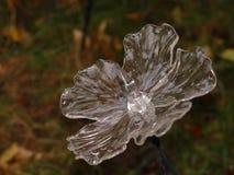 Fiore di vetro Fotografia Stock Libera da Diritti