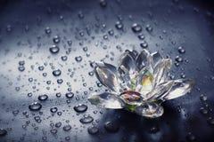 Fiore di vetro e gocce Fotografia Stock Libera da Diritti