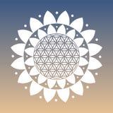 Fiore di vettore del simbolo di vita e Lotus Flower su uno sfondo naturale Immagini Stock