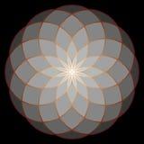 Fiore di vita La geometria sacra illustrazione di stock