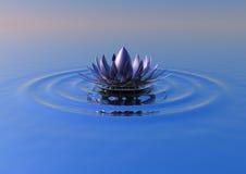 Fiore di zen Fotografia Stock Libera da Diritti