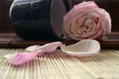 Fiore di zen Fotografie Stock Libere da Diritti