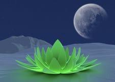 Fiore di zen di inverno Fotografie Stock Libere da Diritti