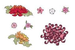Fiore disegnato a mano della peonia, di Sakura e crisantemo Immagine Stock