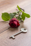 Fiore e chiave Immagini Stock Libere da Diritti