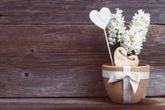 Fiore e cuore in un vaso con un arco sui bordi del fondo Fotografie Stock