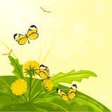 Fiore e farfalle illustrazione vettoriale