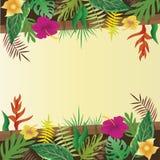 Fiore e foglie con il fondo dello spazio della copia Fotografia Stock