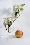 Fiore e frutta Fotografia Stock