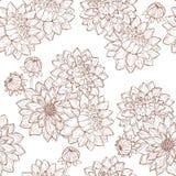 Fiore e germogli della dalia Immagine Stock