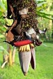 Fiore e mazzo della banana Fotografia Stock Libera da Diritti