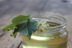 Fiore e miele del tiglio Fotografia Stock