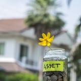 Fiore e monete in barattolo di vetro con l'etichetta Immagini Stock