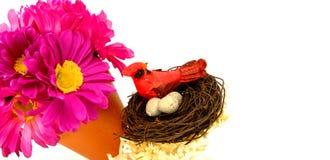 Fiore e nido fotografie stock