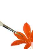 Fiore e pennello Immagini Stock Libere da Diritti