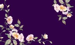 Fiore e rami rosa eleganti fotografia stock