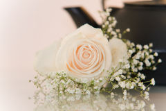 Fiore e una teiera su priorità bassa bianca Fotografia Stock Libera da Diritti