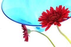 Fiore e vetro di celebrazione Immagine Stock