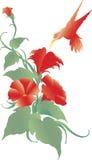 Fiore ed uccello illustrazione vettoriale