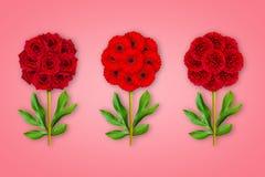 Fiore fantastico tre su un fondo di corallo La composizione delle rose rosse, delle gerbere e delle peonie Oggetto di arte minima fotografia stock