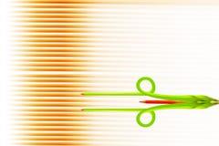 Fiore fatto della matita colorata fotografia stock