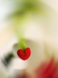 Fiore in forma di cuore Fotografia Stock Libera da Diritti