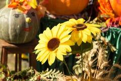 Fiore giallo artificiale del girasole nella natura Fotografia Stock Libera da Diritti