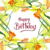 Fiore giallo del narciso dell'acquerello Fiore botanico floreale Quadrato dell'ornamento del confine della pagina illustrazione di stock