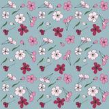 Fiore giapponese sakura illustrazione di stock
