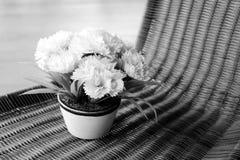 Fiore grigio del mazzo di stile Immagine Stock