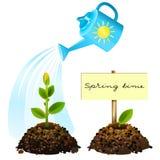Fiore innaffiato dall'innaffiatura. royalty illustrazione gratis