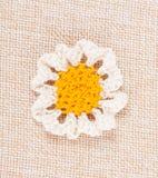 Fiore lavorato a maglia della margherita Immagine Stock