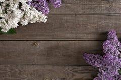 Fiore lilla su fondo di legno rustico con spazio vuoto per il messaggio accogliente Vista superiore Fotografia Stock Libera da Diritti