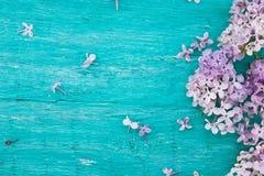 Fiore lilla sul fondo di legno rustico del turchese con la s vuota Immagini Stock Libere da Diritti