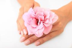 Fiore in mani femminili Immagini Stock