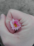 Fiore in mano della tenuta Fotografia Stock
