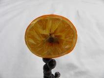 Fiore a metà arancio Fotografie Stock Libere da Diritti